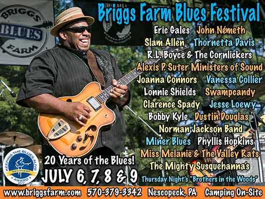 briggs farm ad image