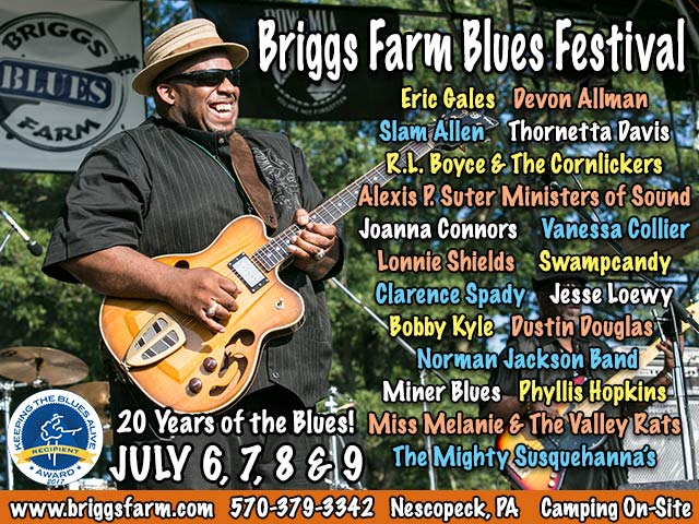 briggs farm blues fest ad image