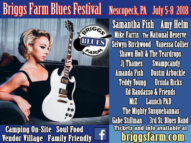 briggs farm blues ad image