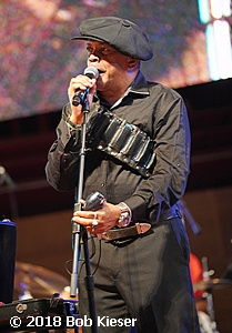 chicago blues fest photo 58