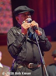 chicago blues fest photo 56