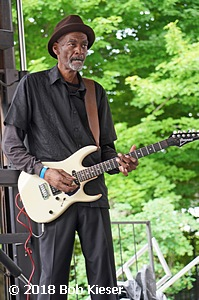 chicago blues fest photo 2