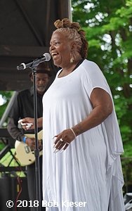 chicago blues fest photo 5