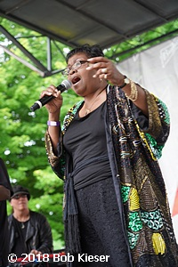 chicago blues fest photo 16