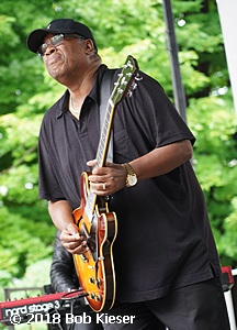 chicago blues fest photo 10
