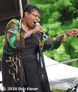 chicago blues fest photo 9