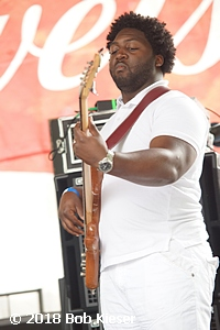 chicago blues fest photo 4