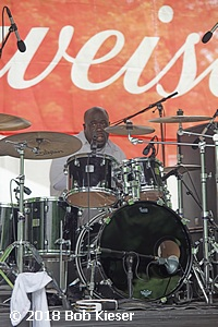 chicago blues fest photo 3