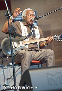 chicago blues fest photo 45