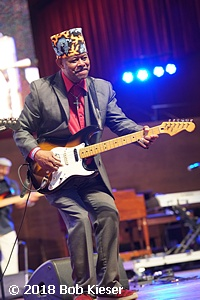 chicago blues fest photo 57