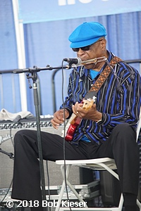 chicago blues fest photo 26