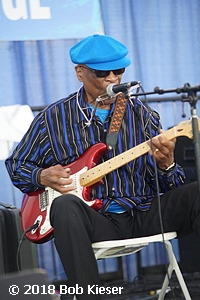 chicago blues fest photo 24