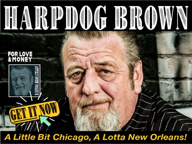 harpdog browne ad image