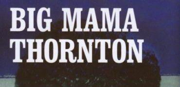 bigmamathorntonbook